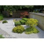 East Meets West - Japanese Gardens
